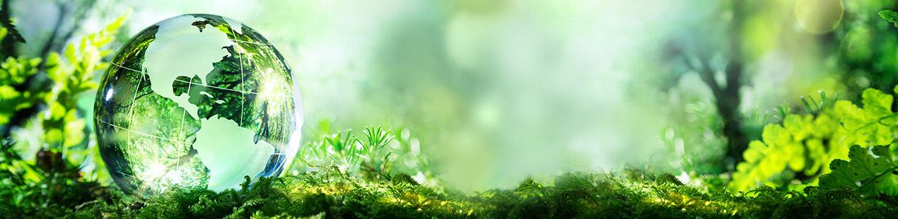 Klimaatneutraal drukken Bannerbild
